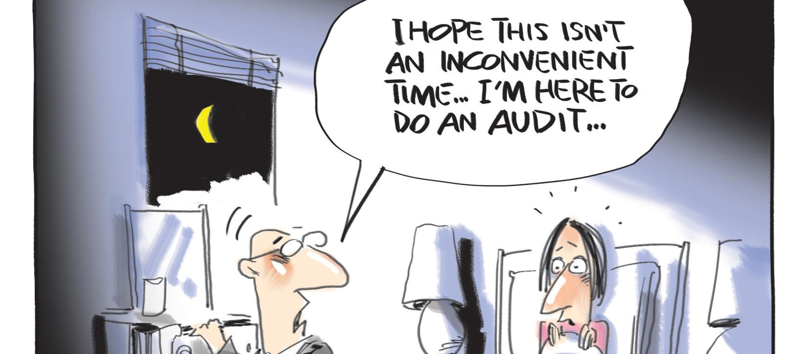 audit cartoon June 2019