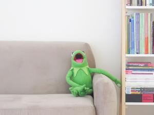 Kermit on couch [Photo by Marcela Rogante on Unsplash]